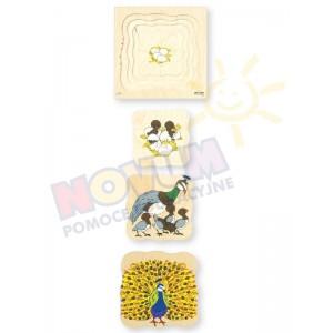 Paw - puzzle drewniane czterowarstwowe