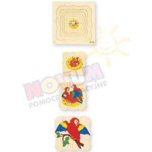 Papuga - puzzle drewniane czterowarstwowe