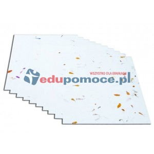 Kwiecisty papier z białym tłem