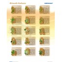 Drzewa liściaste - tablica ścienna