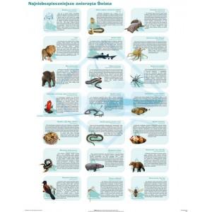 Najniebezpieczniejsze zwierzęta świata - tablica ścienna