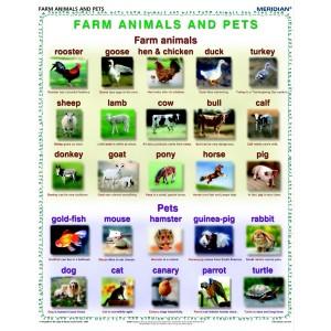 Farm animals and pets - tablica ścienna