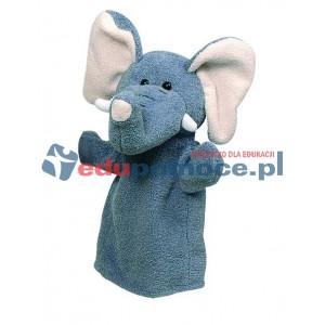 Pacynka - dzikie zwierzęta słoń
